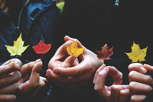 autumn-1839430__340