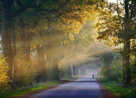 autumn-1751764__340