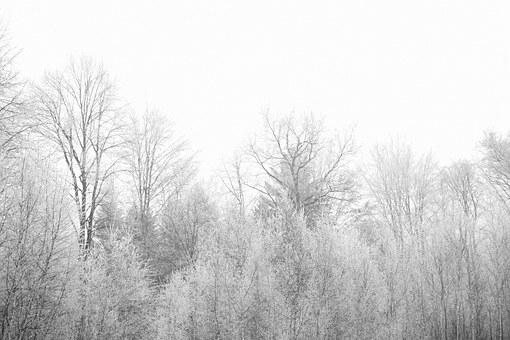 autumn-839563__340